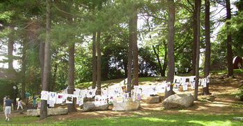 T-shirts hanging among the trees.