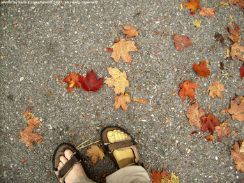 Fall feet.