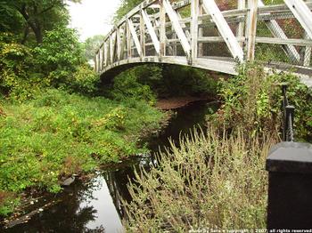 Brook and bridge with heron.