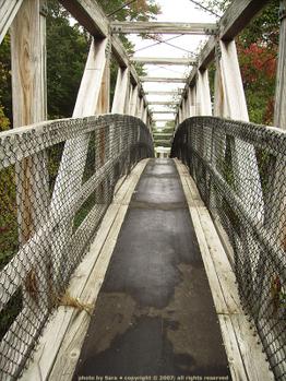 Trestle bridge.