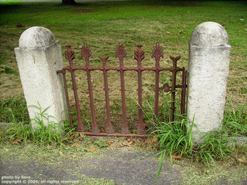 Rusty antique gate / still stands guard over passage / through a fence long gone.