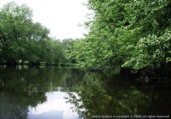 Glassy river.