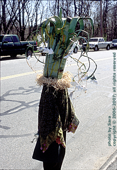 Some kind of iconic nature costume.