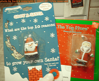 Two packaged Santa clones, ready for incubation.