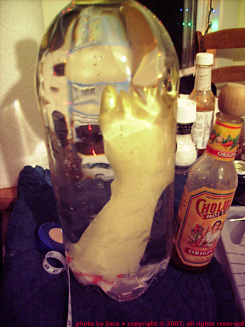 Bottled leg shown next to Cholula bottle for reference.