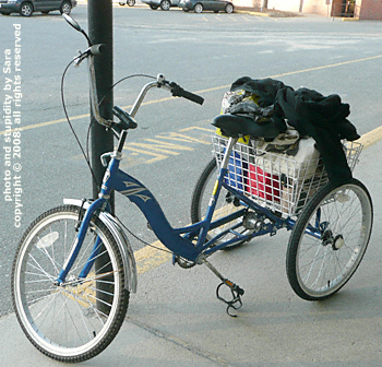 Trike full of groceries topped by my jacket.