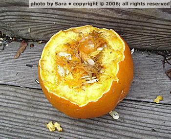 Mutilated pumpkin corpse, still closer.