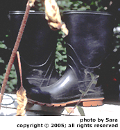 My rubber boots.