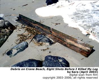 Debris on Crane Beach, Eight Shots Before I Killed My Leg, by Sara.