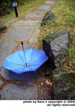 Tossed umbrella.