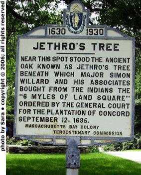 Plaque commemorating Jethro's Tree.