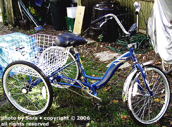 Shiny new blue tricycle for me!