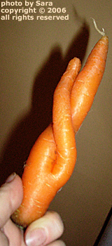 Twisty carrot.