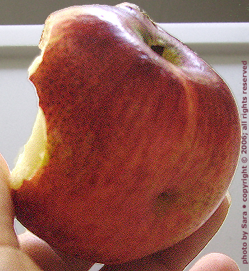 Ugly apple.